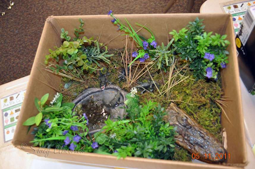 Dinosaur Habitat Dioramas http://stacysrandomthoughts.com/2011/05/curriculum-fair-fun-with-yoyos-wordlesswordful-wednesday/