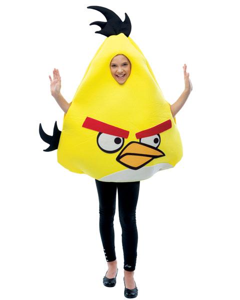 AngryBirdCostume