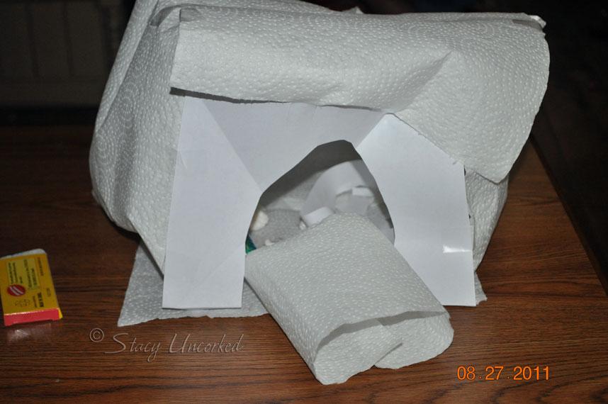 PaperBirdCage
