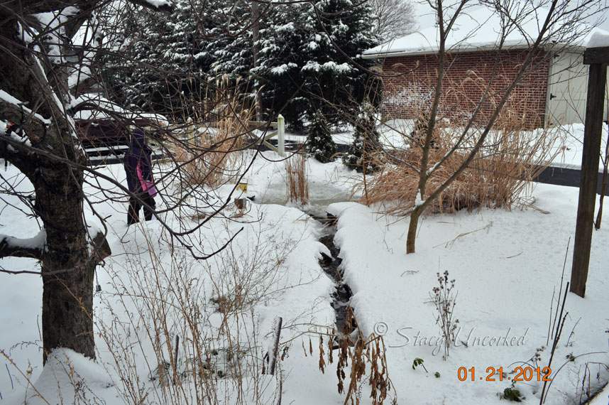 Snow2012
