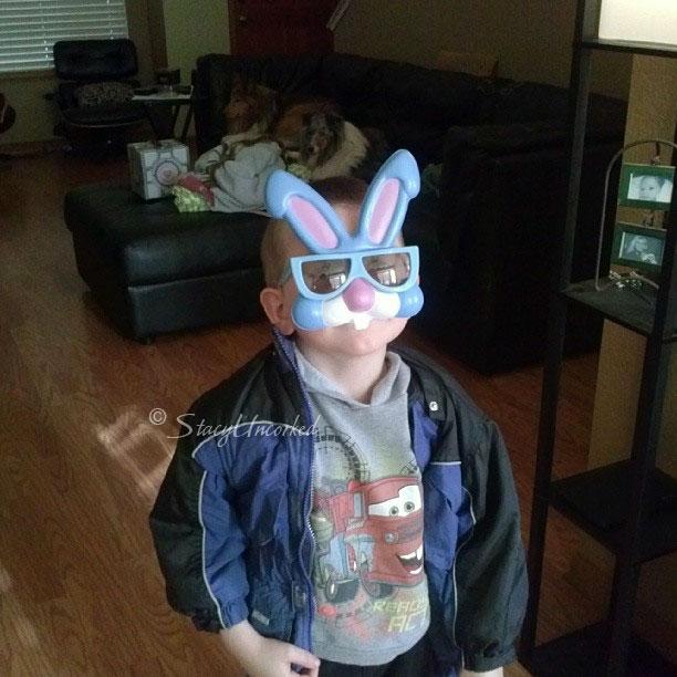 BunnySunglasses