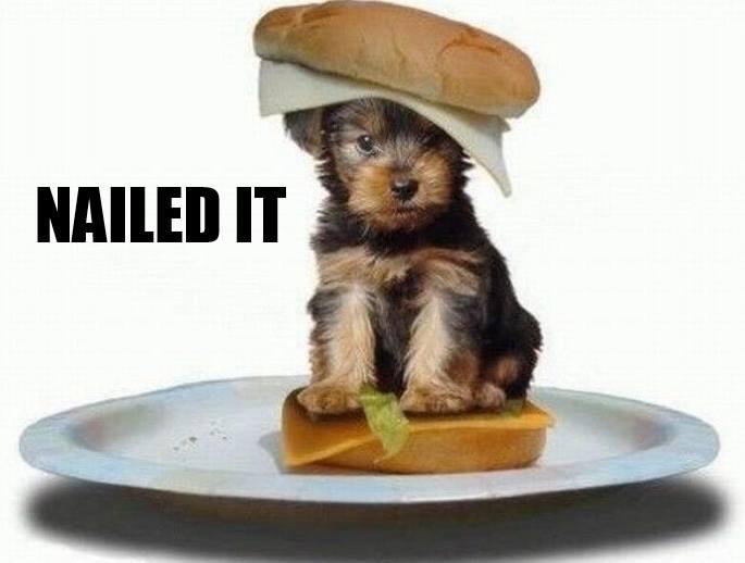 DogSandwiches2
