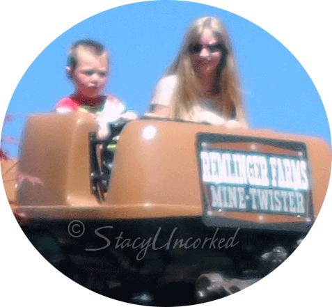 RollercoasterFun6a