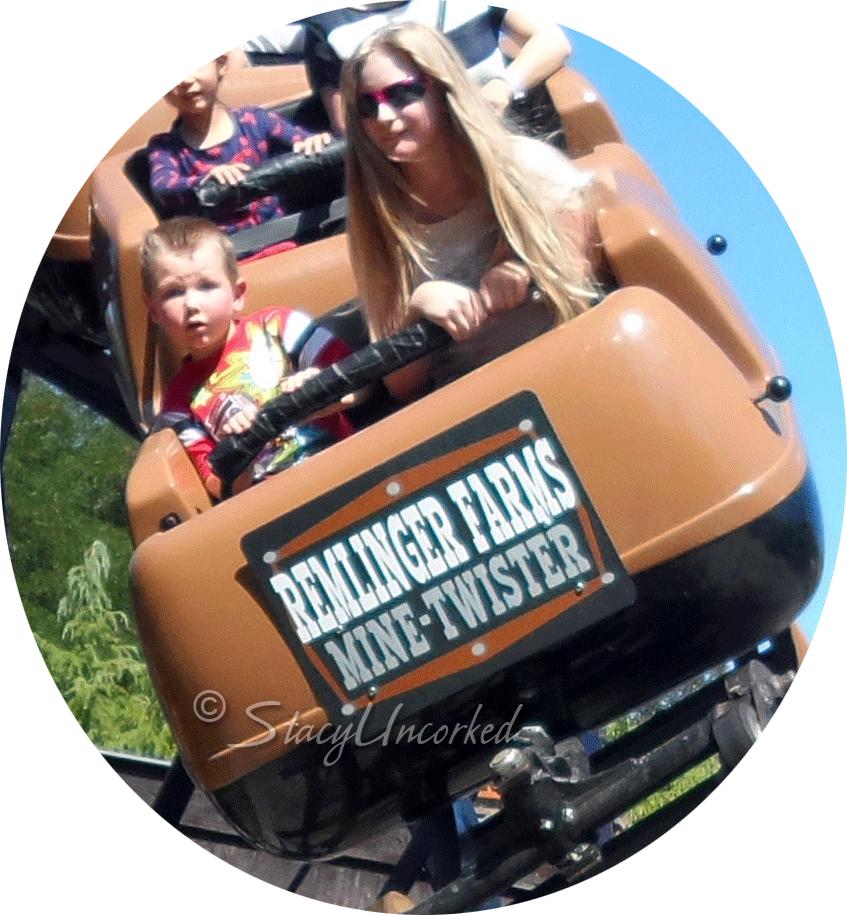RollercoasterFun7a