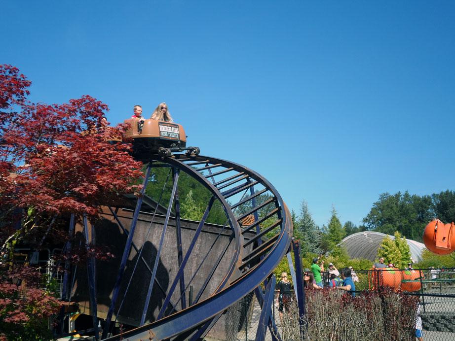 RollercoasterFun8
