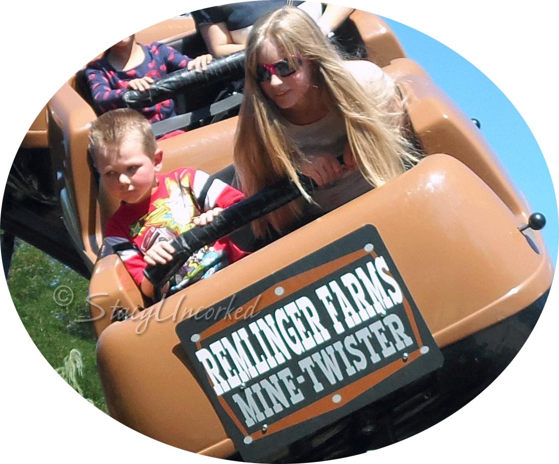 RollercoasterFun9a