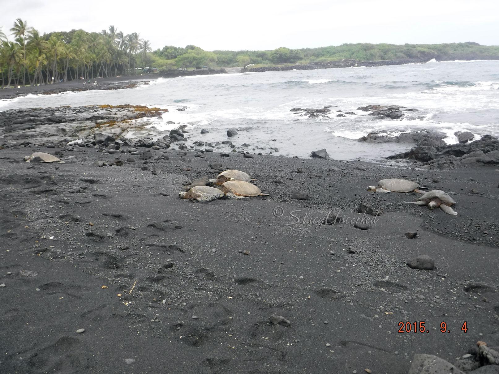 HawaiiBlackSandBeach6