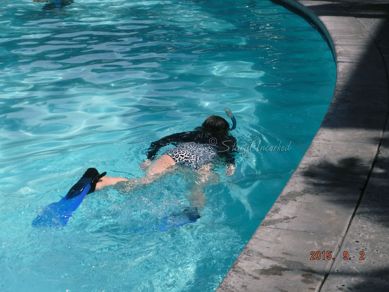 SnorkelingHawaii14
