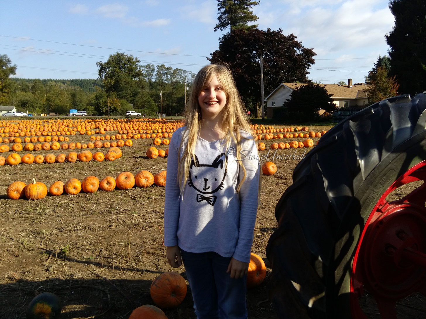 PumpkinPatch2015a