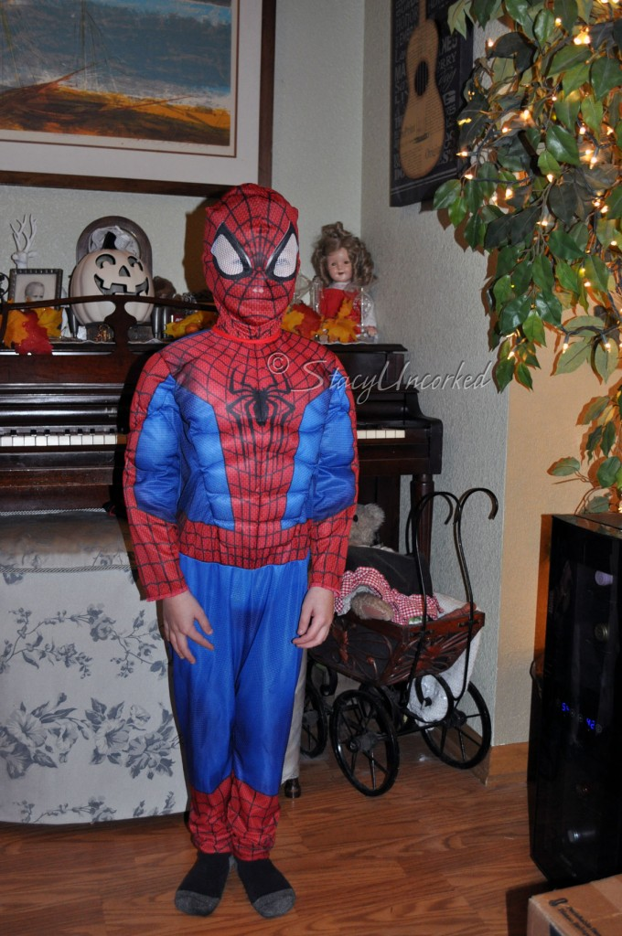 LDSpiderManHalloween2015