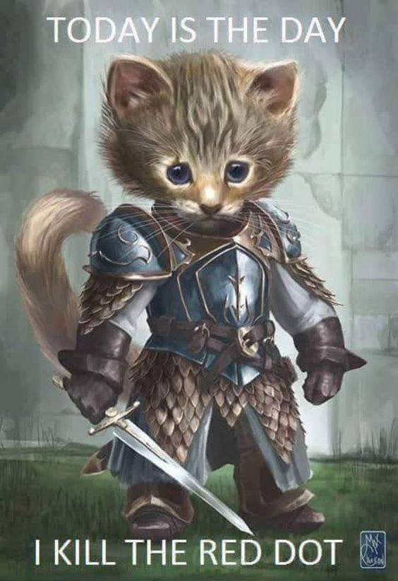 WarriorKitty