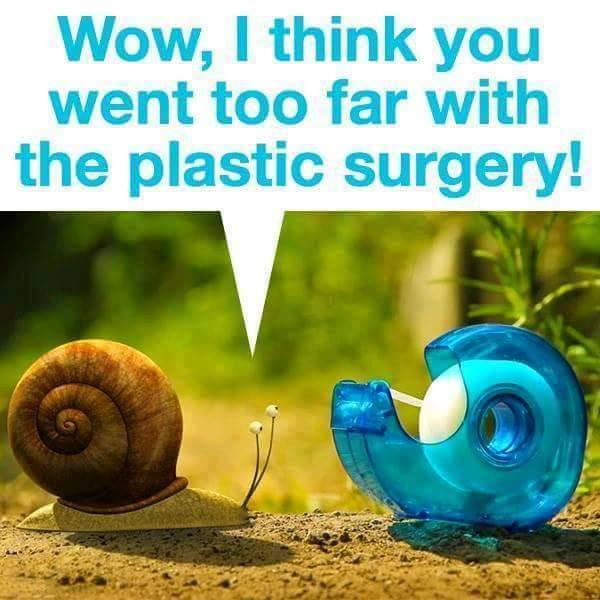 snailfunny