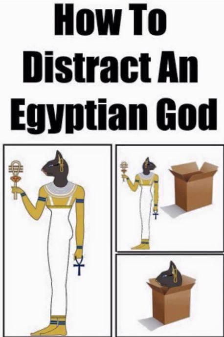 FunnyEgyptianCat