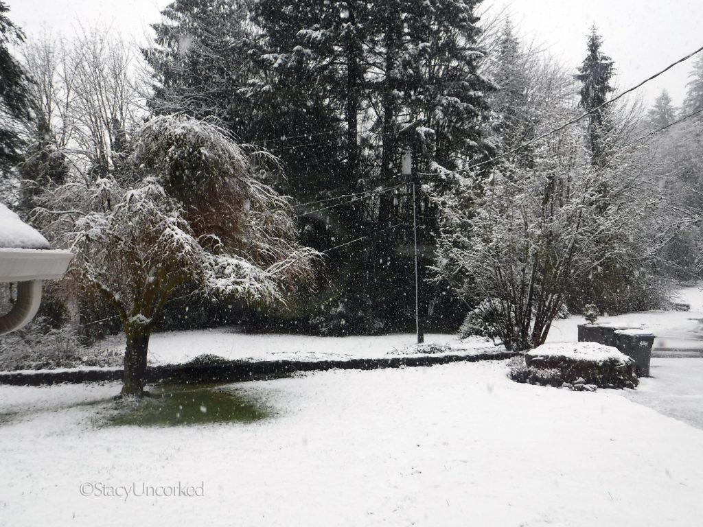 SnowySunday2