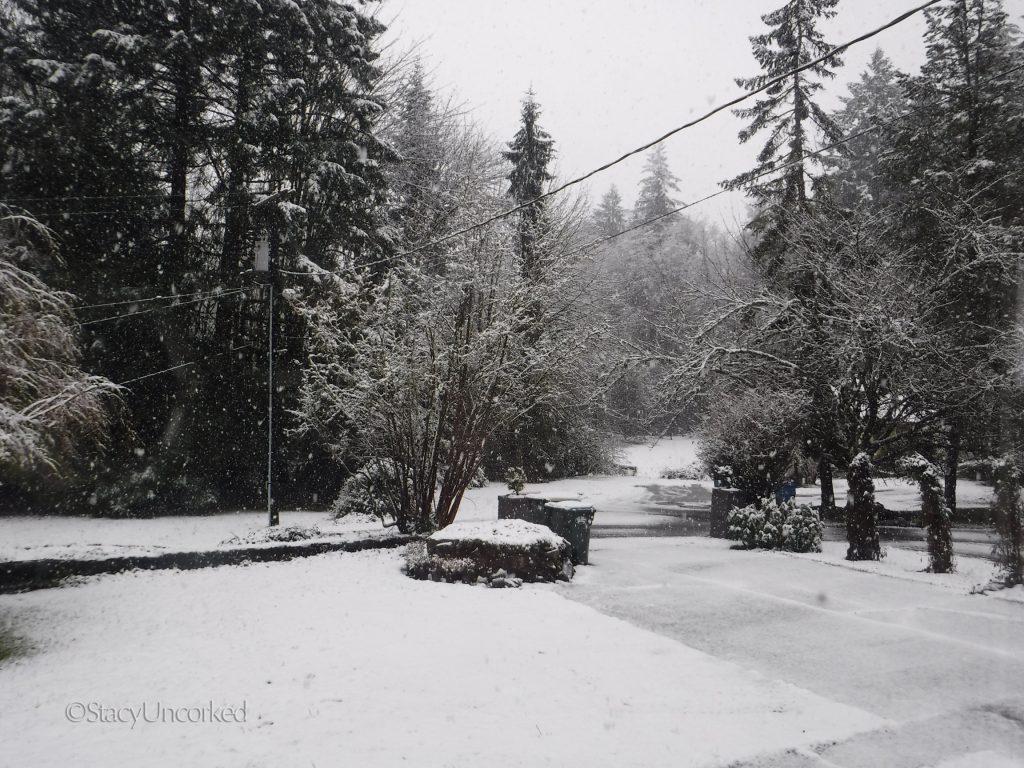 SnowySunday2a